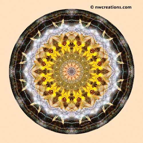 Mandalas from the Heart of Peace, No. 11