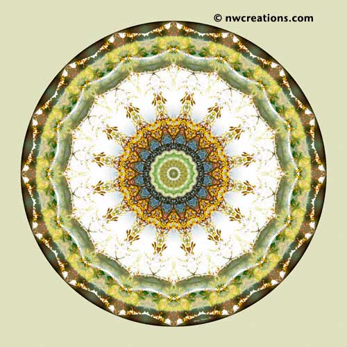 Mandalas from the Heart of Peace, No. 5