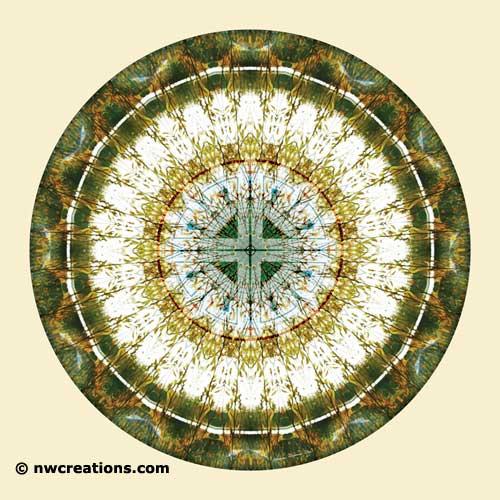 Mandalas of Deep Trust, No. 5