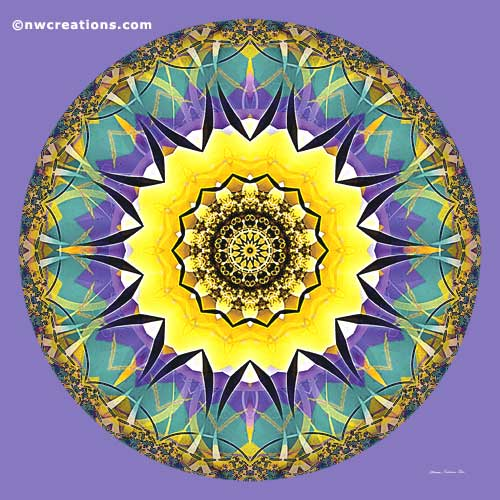 Mandalas of Healing and Awakening, No. 5