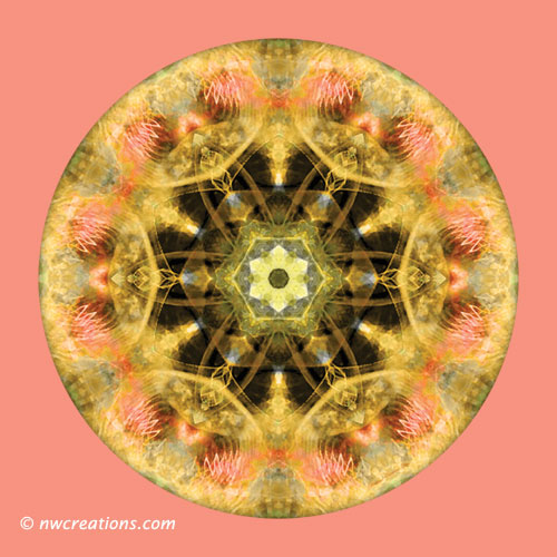 Mandalas from the Heart of Transformation, No. 4