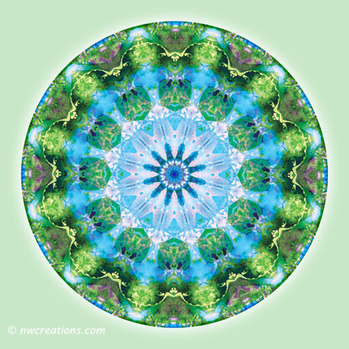 Mandalas from the Heart of Transformation, No. 6
