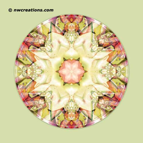 Mandalas from the Heart of  Truth, No. 5