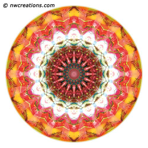 Mandalas from the Heart of Surrender, No. 1