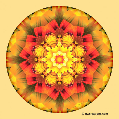 Mandalas_for_a_New_Earth_10_600