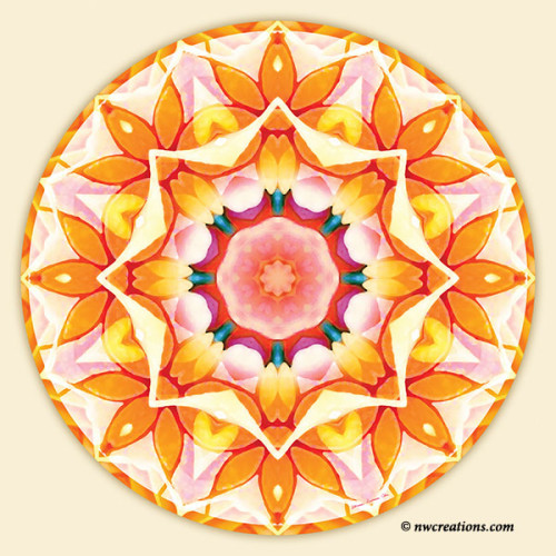 Mandalas_for_a_New_Earth_20_600