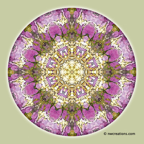 Mandalas_for_a_New_Earth_4_600